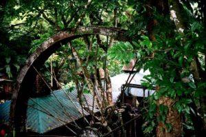 Arnos Vale ist eine ehemalige Zuckerrohrplantage Das traumhafte Areal des Arnos Vale Hotel auf Tobago war einst ein tropischer Garten und Heimat vieler Vögel.