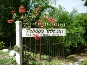 Kakao-Plantage Tobago Cocoa auf Tobago in Trinidad und Tobago der Karibik. Bester Rohstoff für Schokolade