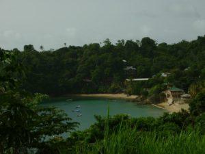 Erkunden Sie Tobago bei einem Landgang mit abschließendem Badeaufenthalt.