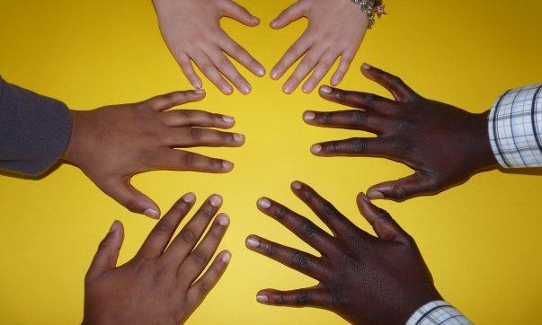 Sie möchten Partner von Tobago-Live werden? Hier erfahren Sie alles über Kooperationen mit Tobago-Live. Bild (c) Pixabay