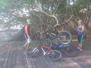 Mit dem Mountainbike sind wir auf Tobago in Trinidad und Tobago in der Karibik unterwegs gewesen. Adventure, Sightseeing und Sport - die Insel Tobago ist perfekt mit dem Fahrrad zu erkunden
