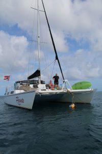 Mit dem Catamaran Picante auf Tobago entlang der Küste zum Schnorcheln. Unsere Erste Fahrt mit einem Katamaran in der Karibik