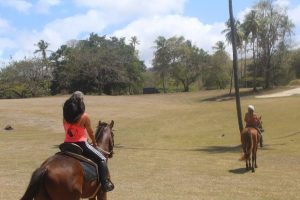 Mit Being with Horses aus Tobago auf Trinidad und Mit Being with Horses aus Tobago auf Trinidad und Tobago sind wir mit Pferden zum Reiten unterwegs gewesen. Der Tagesausflug zum Kimme Museum in Mount Irvine hat Spaß gemacht.