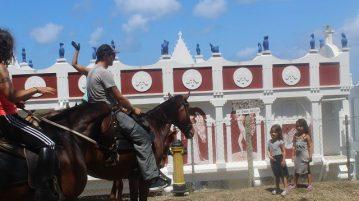 Von Pferden und Skulpturen