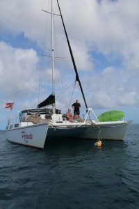 Der Katamaran Picante auf Tobago in Trinidad und Tobago in der Karibik ist ein Segelschiff. Es gibt Fahrten als Sunsettour, Charter, Schnorchel-Tour, Honeymoon, zu zweit. Günstig und zuverlässig mit sehr gutem Service.
